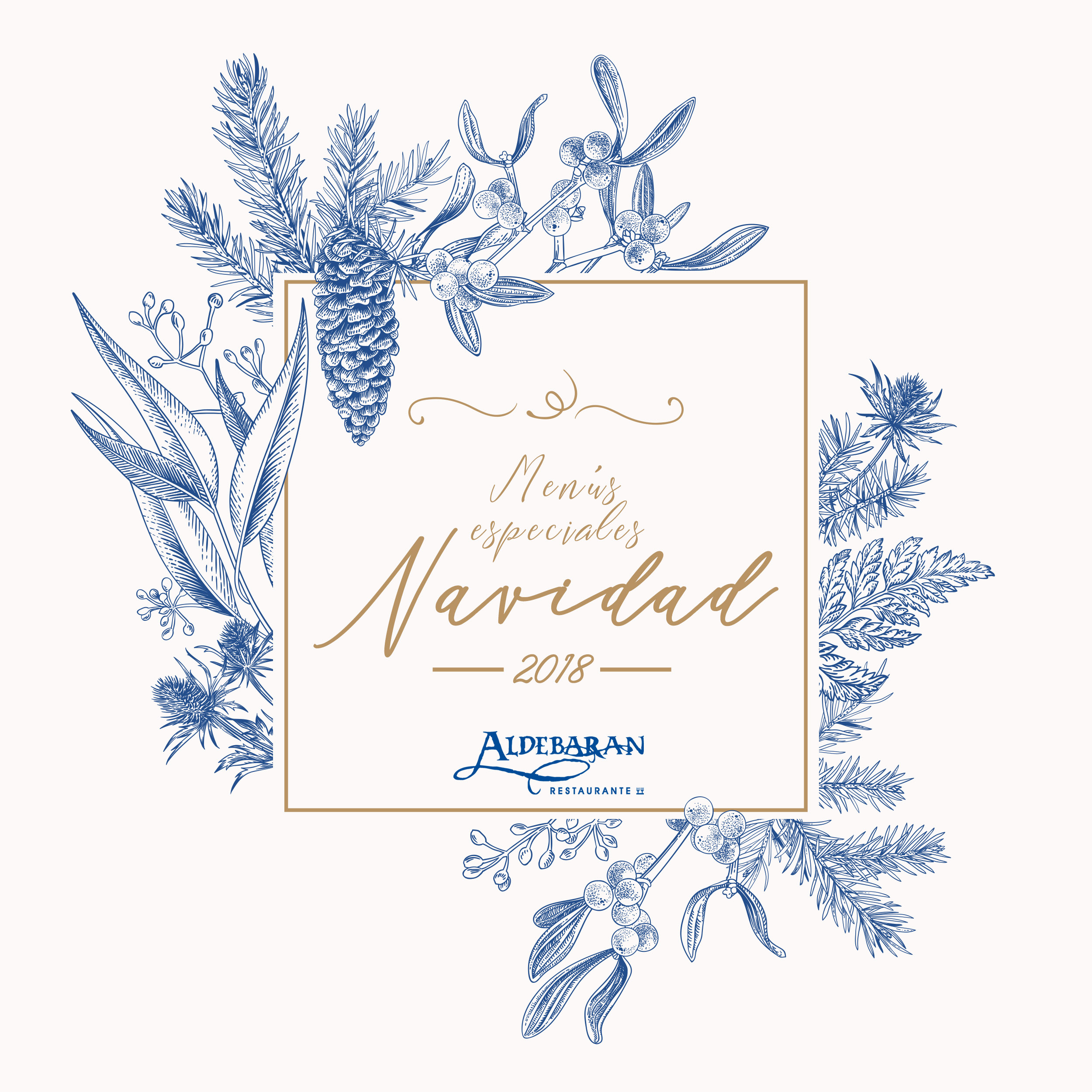 Menus especiales Navidad Aldebaran