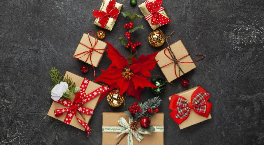 Bienvenida a la Navidad a favor de Alinur en la Finca Maestraldedie